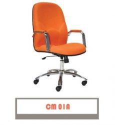 CM-01-A-258x300