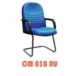 CM-03B-AU-292x300