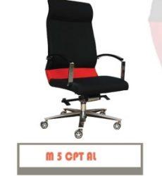 M-5-CPT-AL-260x300