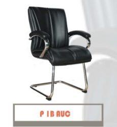 P1B-AUC-262x300