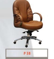 P3B-264x300