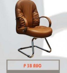 P3B-AUC-256x300