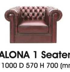 Alona-I-300x239