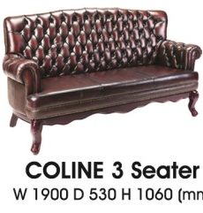Coline-III-300x241