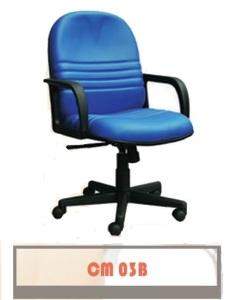 CM-03-B-233x300