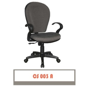 CS-003-A-300x291