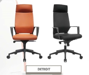 DETROIT-300x253