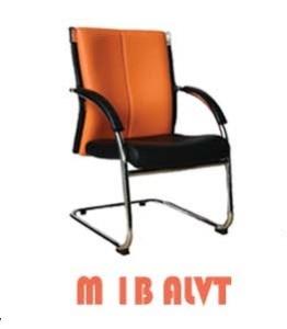 M1B-ALVT-262x300