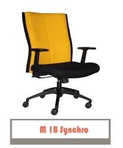 M1B-SYNCHRO-251x300
