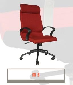 M5-257x300