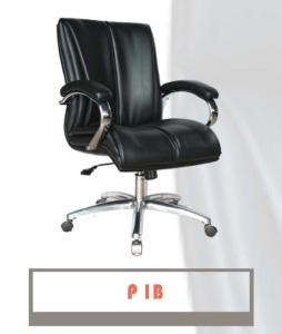 P1B-254x300
