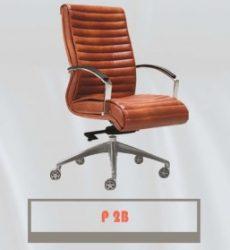 P2B-257x300
